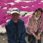 志田フラワー園シバザクラ絨毯は家族の愛の絆【人生の楽園】