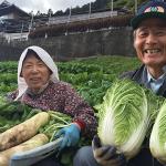 【人生の楽園】徳島県民宿「うり坊」山暮らしジビエ料理