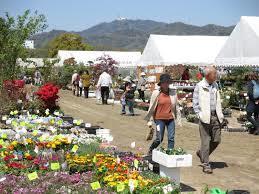 広島春のグリーンフェア2019花と緑の広場アクセス駐車場案内